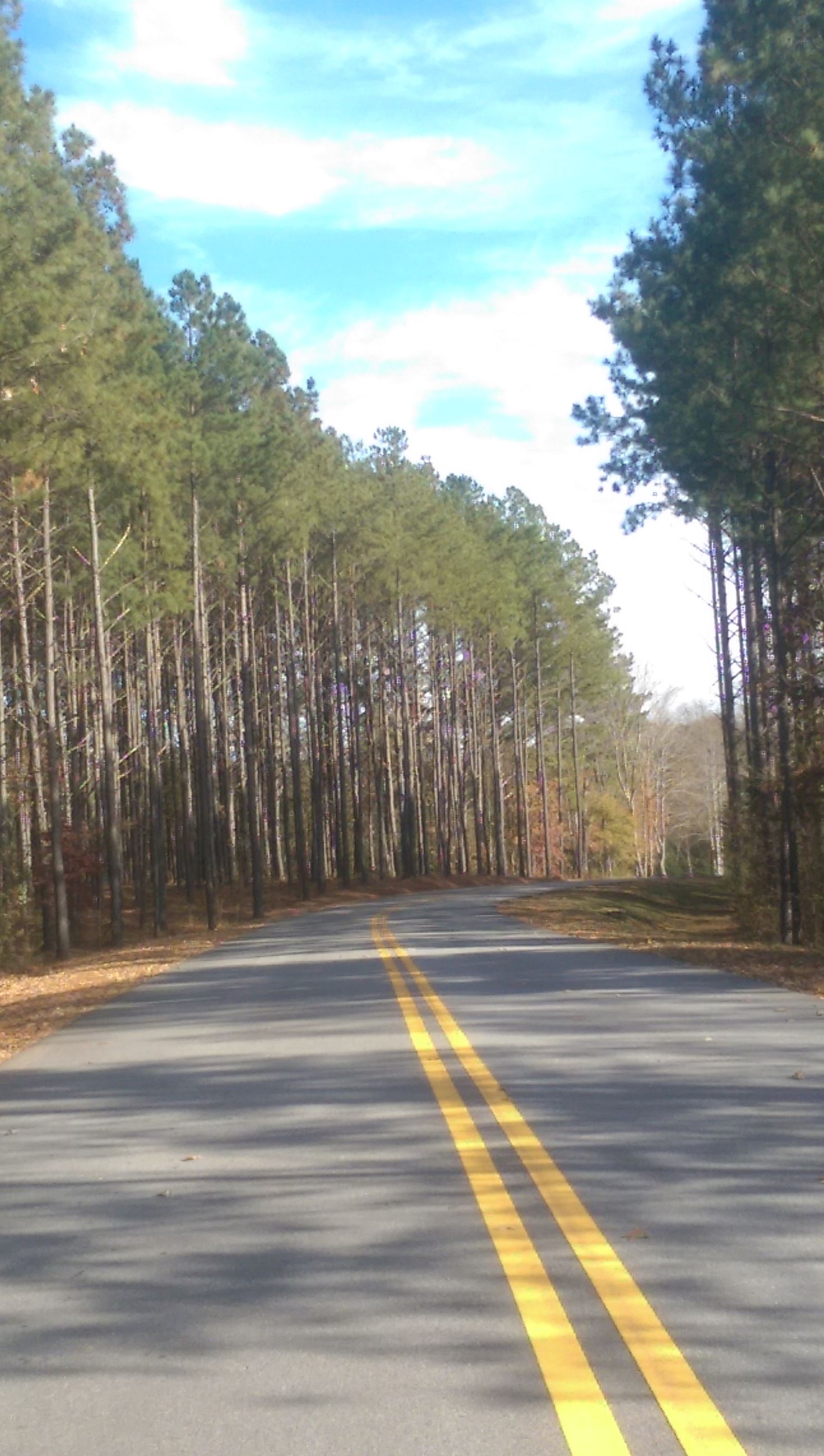 tallapoosa senior singles Find tallapoosa homes for sale with the real estate book view property listings and connect with real estate agents in tallapoosa, ga.